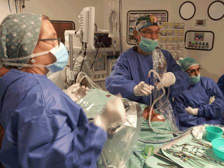 ניתוח אנדוסקופי של הסינוסים